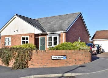 Thumbnail 2 bedroom semi-detached bungalow for sale in Violet Grove, Garstang, Preston