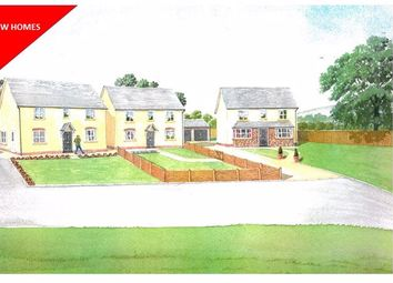 Thumbnail 4 bed detached house for sale in Garway Common, Garway, Hereford