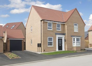 """Thumbnail 4 bed detached house for sale in """"Holden"""" at Dunbar Way, Ashby-De-La-Zouch"""