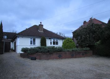 Thumbnail 4 bedroom detached bungalow to rent in Bedhampton Hill, Bedhampton, Havant