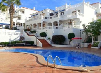 Thumbnail Studio for sale in Los Cristianos, Royal Palm, Spain