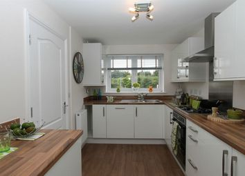 Thumbnail 3 bedroom detached house to rent in Cranesbill Close, Orchard Park, Cambridge