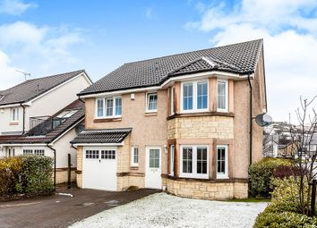 Thumbnail 4 bed detached house for sale in Pine Crescent, Menstrie