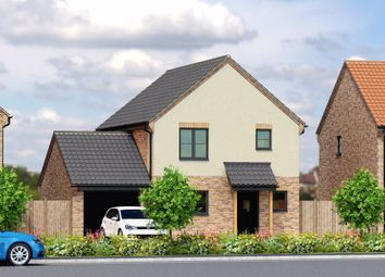 Thumbnail 3 bed detached house for sale in Plot 3, Palmers Lane, Freethorpe
