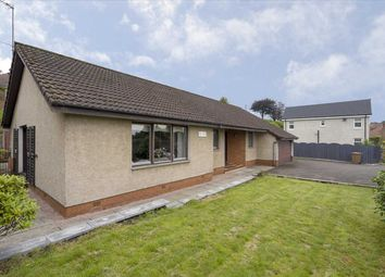 Thumbnail 4 bedroom bungalow for sale in The Dale, Polmont Road, Falkirk