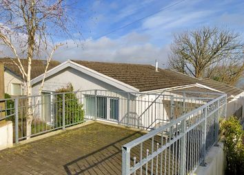 Thumbnail 2 bedroom detached bungalow to rent in Scandinavian Heights, Saundersfoot