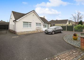 Thumbnail 2 bedroom bungalow to rent in Morden Avenue, Ferndown, Dorset