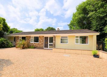 Thumbnail 4 bed detached bungalow for sale in Downlea, Tavistock
