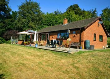 Thumbnail 3 bed detached bungalow for sale in 13, Millfields, Milford Road, Newtown, Powys
