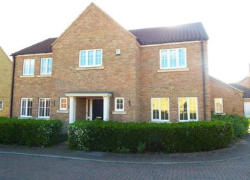 Thumbnail 4 bed detached house to rent in Meadow Lane, Haddenham, Ely