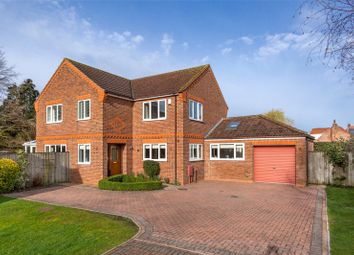 Thumbnail 5 bedroom detached house for sale in Back Lane South, Wheldrake, York
