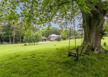 Thumbnail 4 bed equestrian property for sale in Hanging Birch Lane, Horam, Heathfield, East Sussex