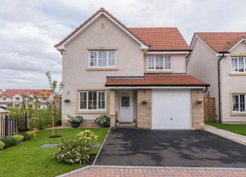 Thumbnail 3 bed detached house for sale in Buchan Park, Alloa