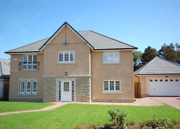 Thumbnail 5 bedroom detached house to rent in Moffat Place, North Berwick