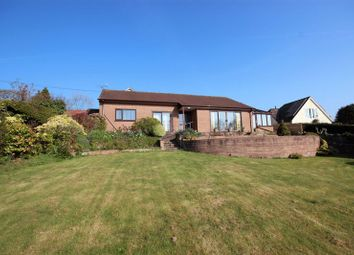 Thumbnail 3 bed detached bungalow for sale in Silver Street, Kilmington, Axminster