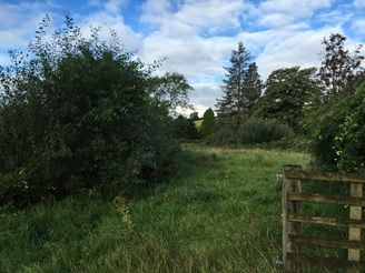 Thumbnail Land for sale in Land Adjacent To Walkmill Gardens, Gosforth