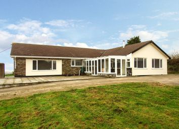 Thumbnail 5 bed bungalow to rent in Roche, St. Austell
