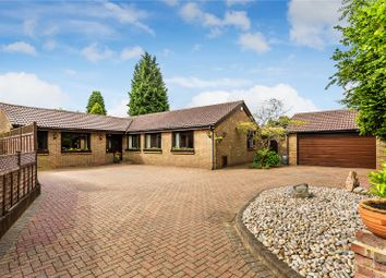 Thumbnail 4 bed detached bungalow for sale in Linden Drive, Chaldon, Surrey
