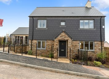 Thumbnail 4 bed detached house for sale in Walden, Blackawton, Totnes