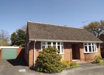 Thumbnail 4 bedroom bungalow for sale in Hardwick Drive, Mickleover, Derby, Derbyshire
