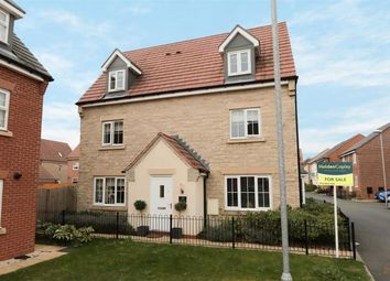 Thumbnail 5 bed detached house for sale in Dexters Grove, Hucknall, Nottingham