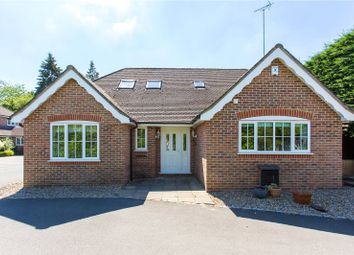 Thumbnail 4 bed bungalow to rent in Willow Close, Chalfont St. Peter, Gerrards Cross, Buckinghamshire