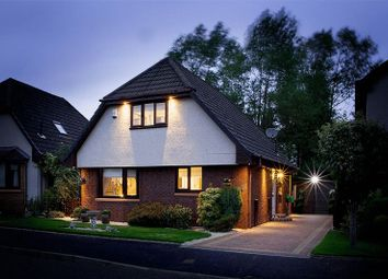 Thumbnail 4 bed detached house for sale in Kinglass Drive, Bo'ness