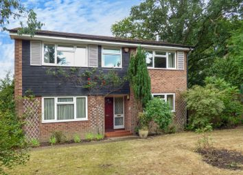 Thumbnail 4 bed detached house to rent in Bepton Close, Midhurst