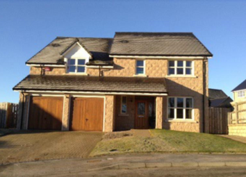 Thumbnail 5 bed detached house to rent in Bowbutts Brae, Strachan AB31,