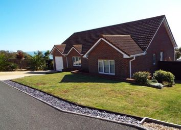 Thumbnail 3 bed bungalow for sale in Ventnor, Isle Of Wight, .