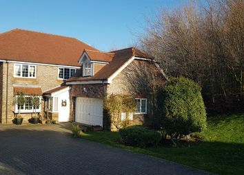 Thumbnail 5 bedroom detached house for sale in Dodnor Lane, Newport