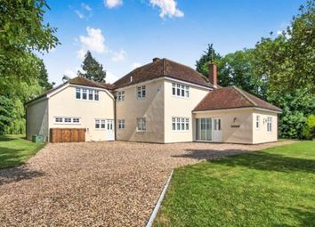 Thumbnail 5 bed detached house for sale in Little Waltham, Chelmsford, Essex