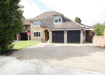 Thumbnail 4 bed property to rent in Aira Close, Gamston, Nottingham