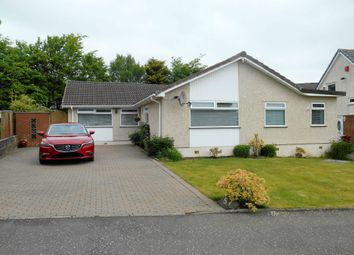 Thumbnail 3 bed bungalow for sale in Sycamore Gardens, Blackwood