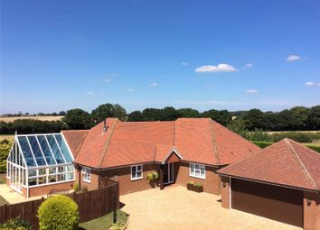 Thumbnail 6 bed detached bungalow for sale in West Tisted, Alresford, Hampshire