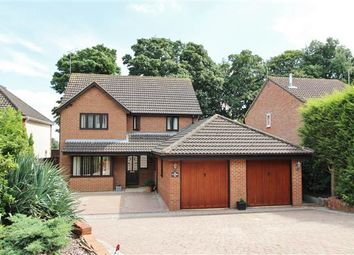Thumbnail 5 bedroom detached house for sale in Wigmore Close, Ipswich