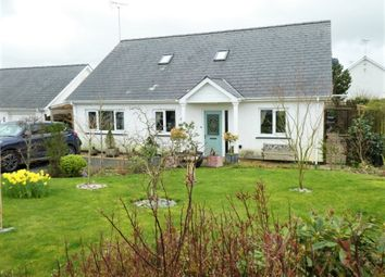 Thumbnail 4 bed bungalow for sale in 10 Cwrt Maesmynach, Cribyn, Lampeter