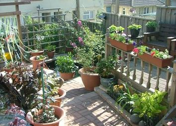 Thumbnail 2 bed maisonette for sale in Fernicombe Road, Paignton