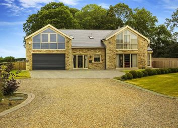 Thumbnail 4 bed detached house for sale in West Thorn Farm, Kirkley, Newcastle Upon Tyne