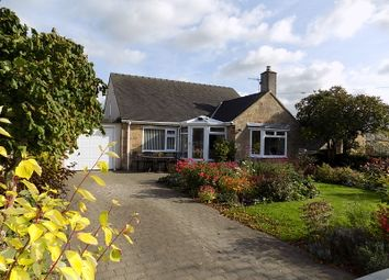 Thumbnail 2 bed detached bungalow for sale in Millers Green, Wirksworth