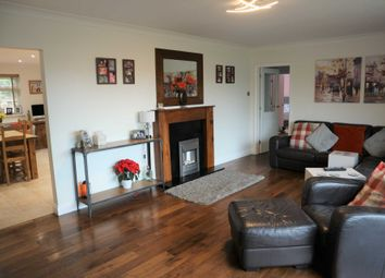 Thumbnail 4 bed detached bungalow for sale in Walnut Tree Lane, Westbere, Canterbury