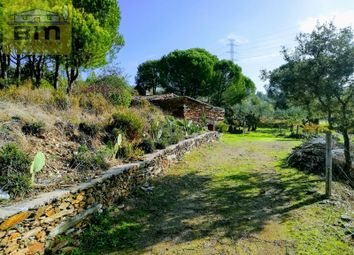 Thumbnail 1 bed finca for sale in Benquerenças, Benquerenças, Castelo Branco
