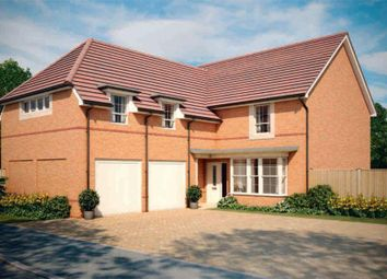 """Thumbnail 4 bed detached house for sale in """"Rothbury"""" at Blackthorn Crescent, Brixworth, Northampton"""