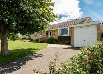 Thumbnail 4 bed bungalow for sale in Valley Road, Bothenhampton, Bridport