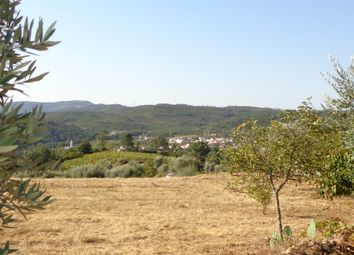 Thumbnail Land for sale in Penela, Podentes, Penela, Coimbra, Central Portugal
