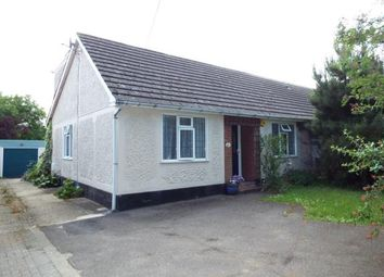 Thumbnail 4 bed bungalow for sale in The Avenue, Witham