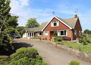 Thumbnail 3 bed detached bungalow for sale in Hyde Lane, Newnham