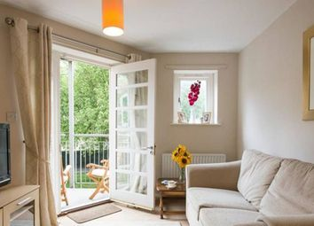 Thumbnail 2 bed flat to rent in Hornbeam Square, London