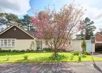 Thumbnail 3 bed detached bungalow for sale in West Wellow, Romsey, Hampshire
