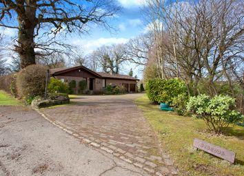 Thumbnail 5 bedroom detached bungalow for sale in Friday Street, Rusper, Horsham